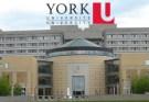 York University Scholarships For Undergraduate Students