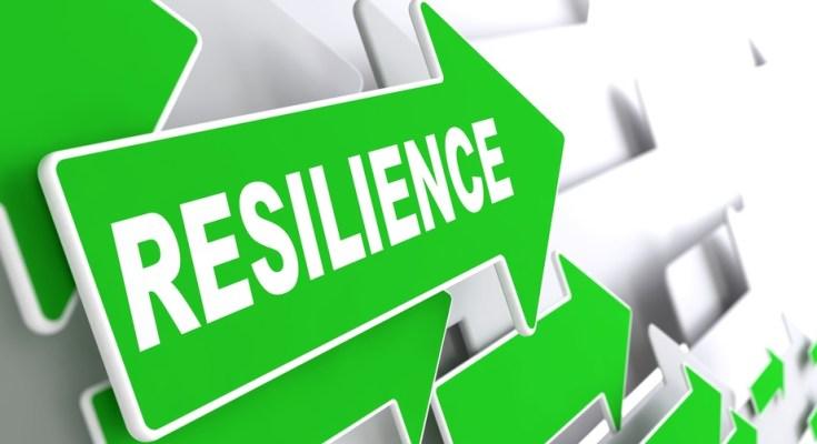 The Resilient Entrepreneurs - Episode 8