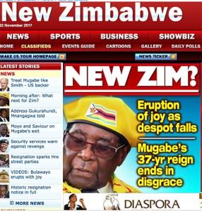 Mugabe. Fine di un'era. copertina New Zimbabwe