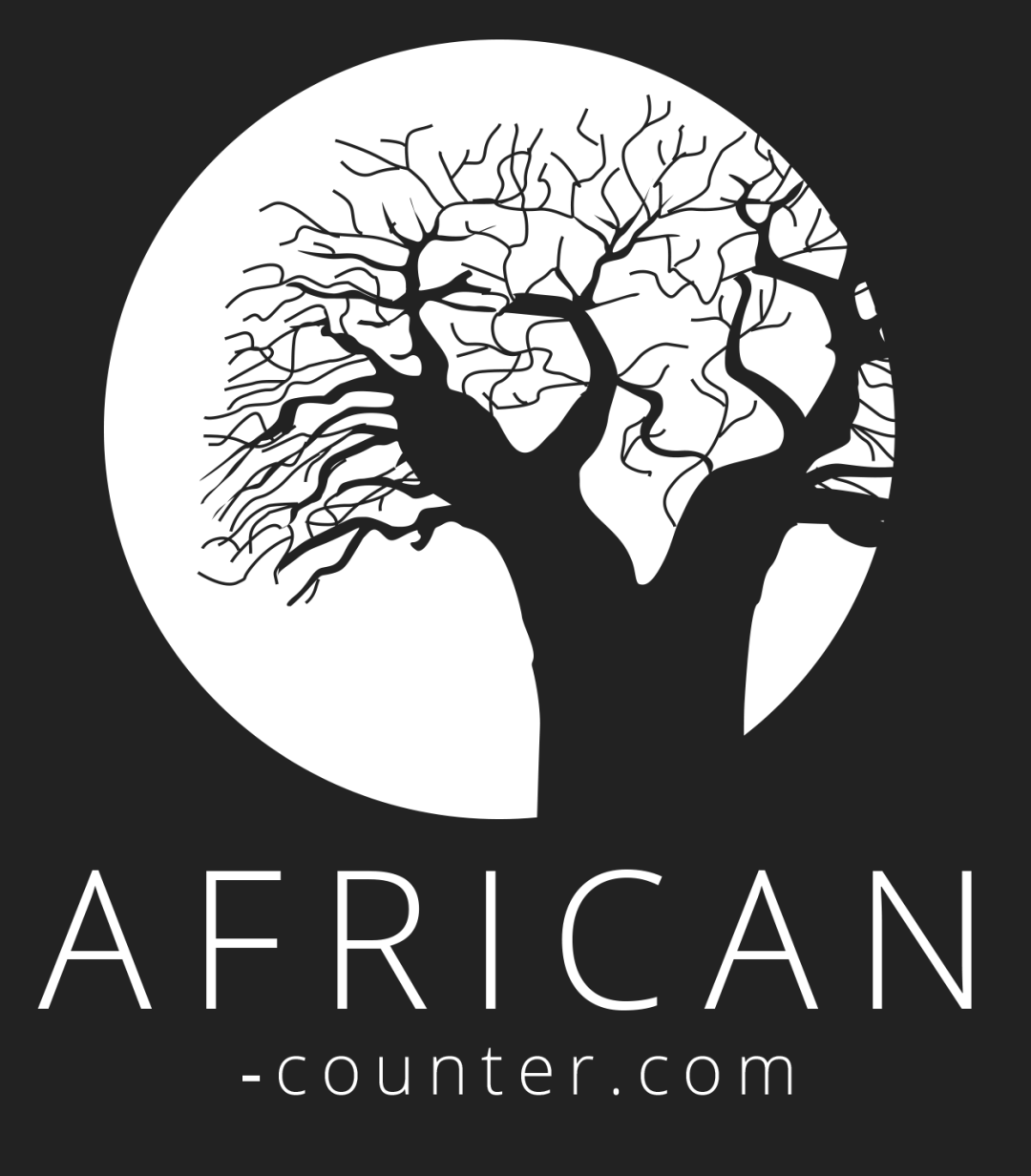The African Counter Logo