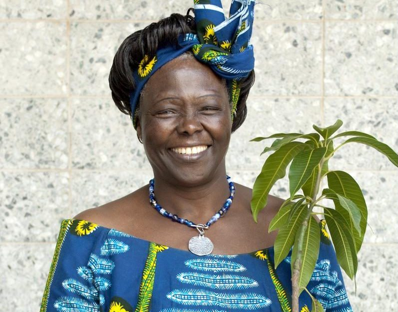 Wangari Maathai, our Mother Nature (Ecologist, Kenya)