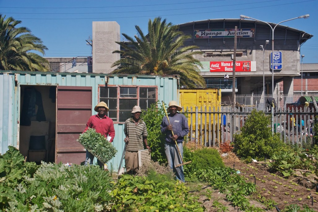 Farmers from Abalimi Bezekhaya, an urban farming initiative in Cape Town. Credit: Ellen Zachos.