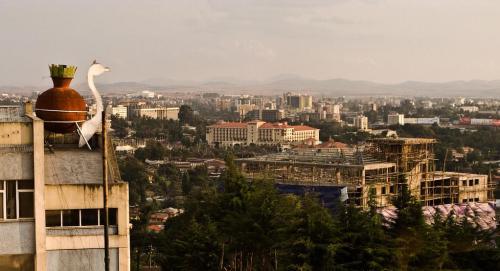 Tigrayans in Ethiopia targeting Addis Ababa