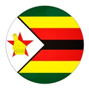 Zimbabwe button with flag