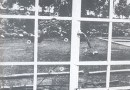 Rhodesia: 1972: The First attack on a White Farm by Black Communist Terrorists