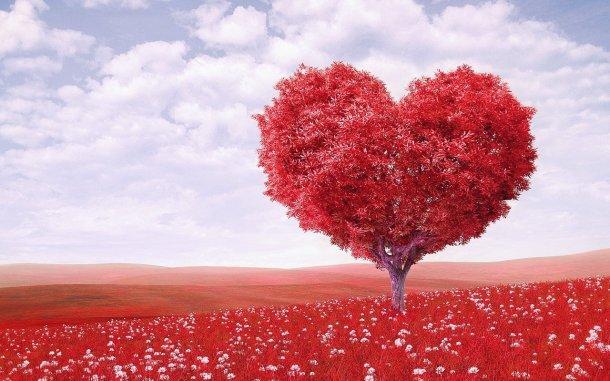 Africanfinestmums - Blog post - My funny valentine