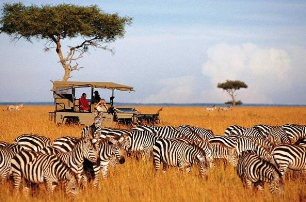 Maasai Mara is very good place to visit in kenya