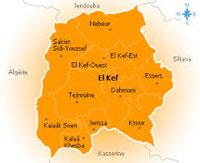 Un réseau spécialisé dans le démontage de voitures volées a été démantelé par les unités de sûreté du Kef