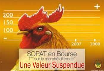 La Sopat est une entreprise spécialisée dans la production de la viande de poulet