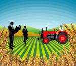 Selon les prévisions  du ministère de l'agriculture