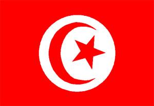 « La Tunisie ambitionne de consolider sa position en tant que hub énergétique de la Méditerranée en développant ses atouts et sa coopération avec les pays de la région »