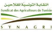 Le syndicat des agriculteurs de Tunisie met en garde contre les propos qui circulent concernant l'intention des autorités d'augmenter le stock technique du lait pour faciliter