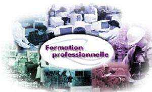 La Tunisie compte 136 centres publics de formation professionnelle d'une capacité de 90 mille jeunes dispensant 270 spécialités. Le secteur privé dispose de 3 mille centres accueillant 40 mille stagiaires. Selon les chiffres fournis par le ministère de la