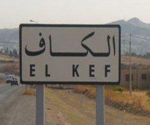 500 kilos d'ammonitrate ont été saisis par la police judiciaire au Kef
