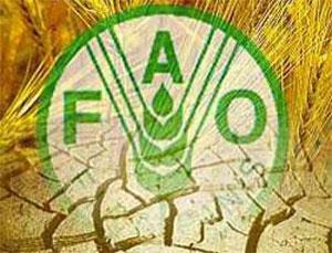 La FAO (Food and Agriculture Organization) en collaboration avec le gouvernement tunisien convoquera la 28ème Session de
