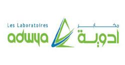 Le chiffre d'affaires total de la société Adwya