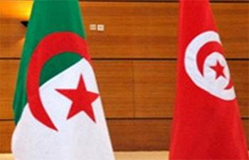 Un groupe formé de 16 terroristes dont des Tunisiens
