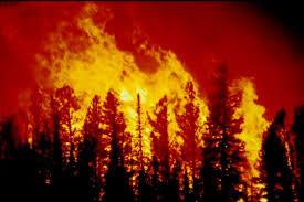 Un gigantesque incendie s'est déclaré