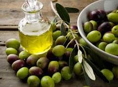 Dans le cadre de sa stratégie de mise en valeur du secteur oléicole et à l'occasion du lancement du Guide de l'Huile d'Olive en Tunisie