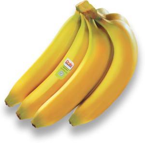 Organic Fresh Premium Banana 1kg