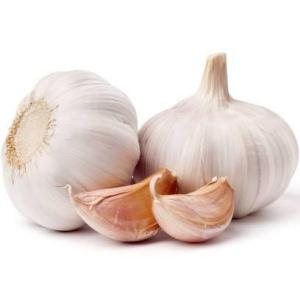 Fresh Garlic 500g