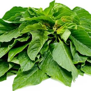 African Spinach Efo Shoko 1 bunch
