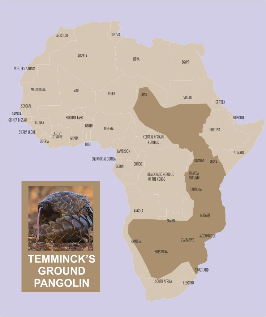 Temmincks ground pangolin range
