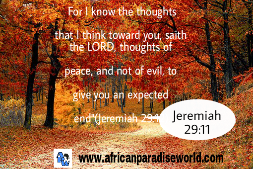 For I know the plans I have for you,said the Lord.Jeremiah 29:11
