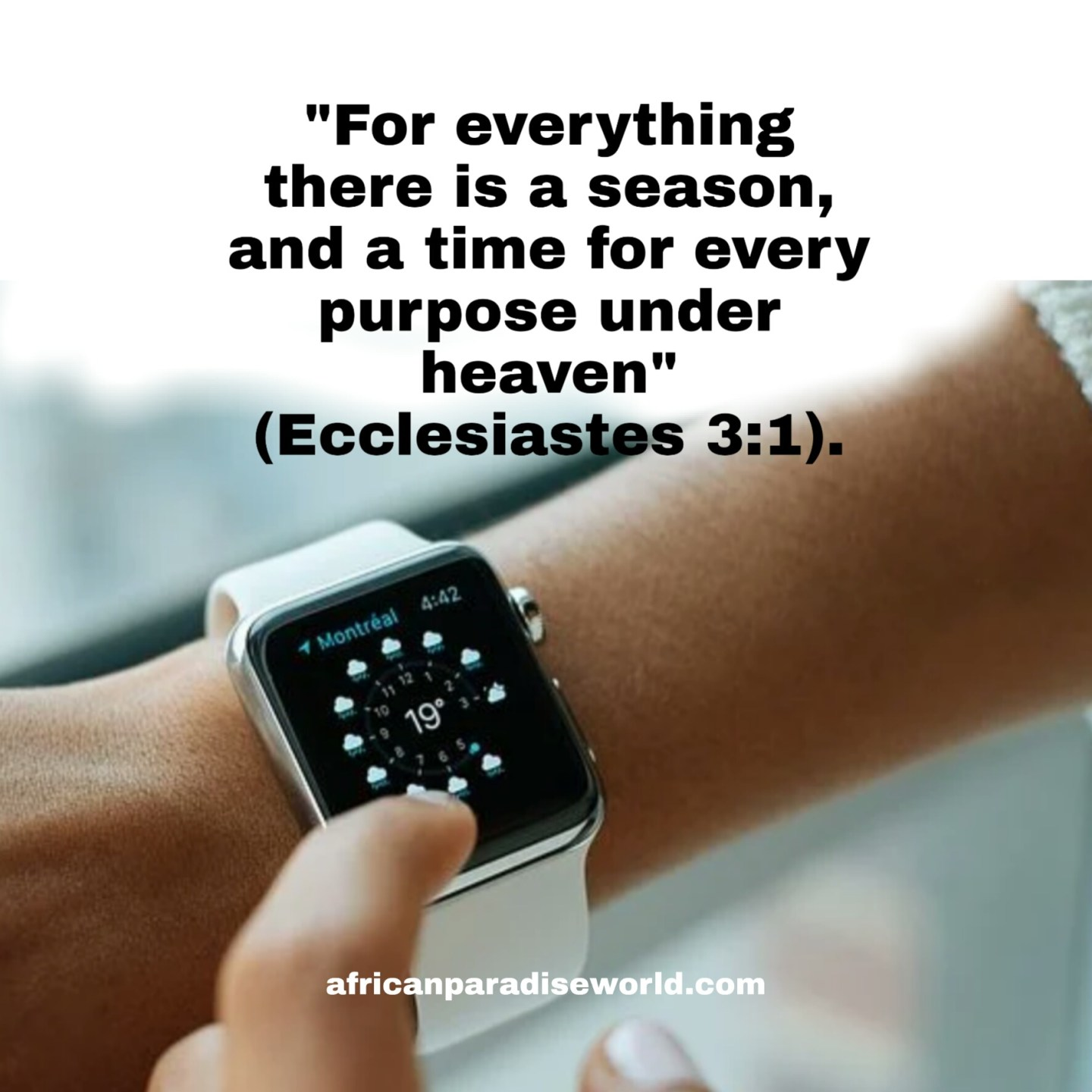 There is time for everything Bible verse