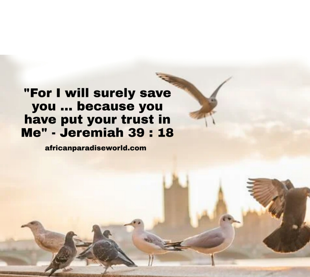 Trust God Bible verse
