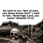 With God Dry Bones Can Have Life - Overcome Hopelessness