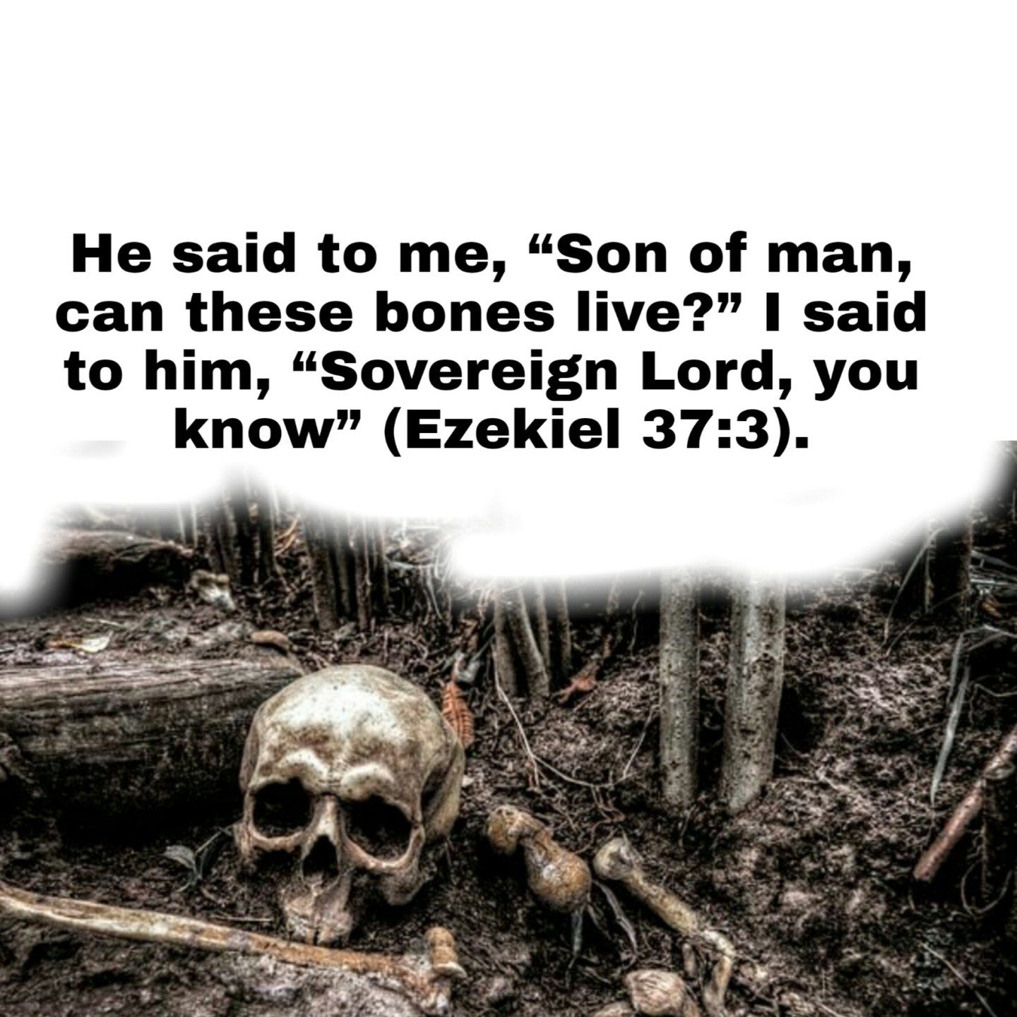 Valley of dry bones Bible verse