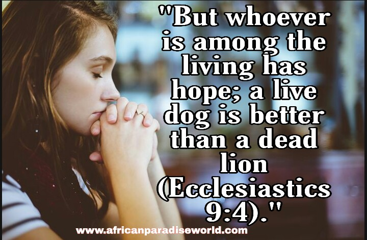 Read Bible verses about hope when you are feeling hopeless