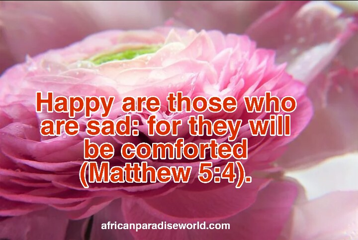 Bible verses on death example - Matthew 5:4