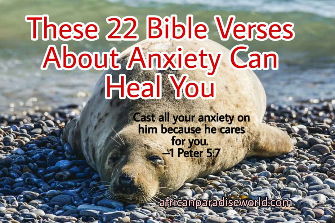 22 Bible verses about anxiety