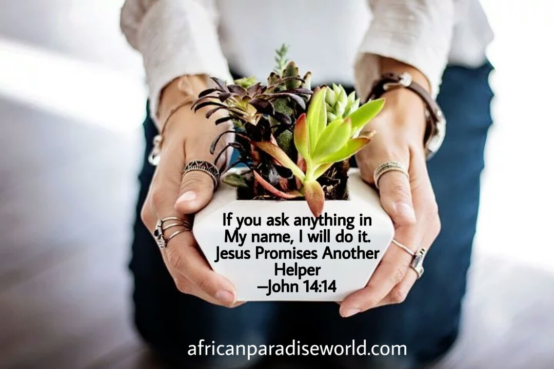 John 14:14 Bible verse