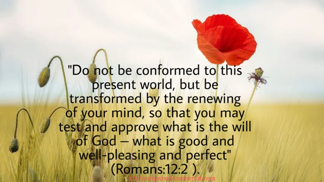 How to renew your heart Bible verse – Romans 12:2