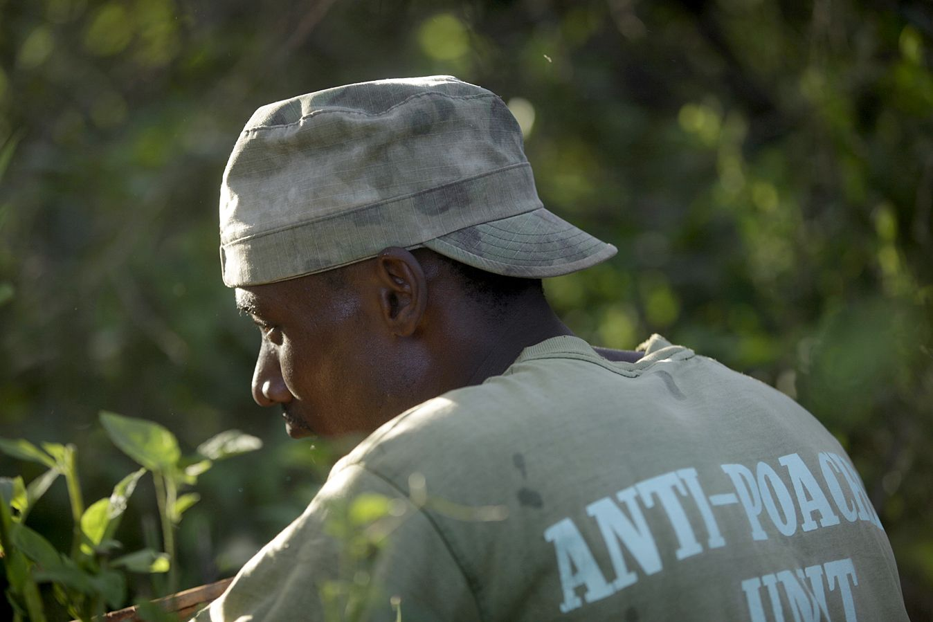 APW's highly-trained anti-poaching unit conducts regular patrols to fight the illegal killing of vulnerable wildlife species.