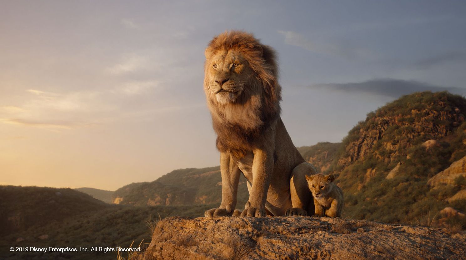 Disney's The Lion King promotional image