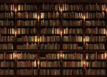 Thin-Art-fabric-bookshelf-backdrops-photography-background-library-backdrop-for-photo-studio-D-1489.jpg_640x640