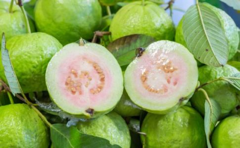 10 Health Benefits Of Eating Guava