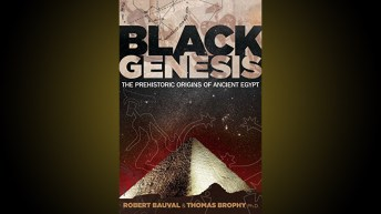 Black Genisis