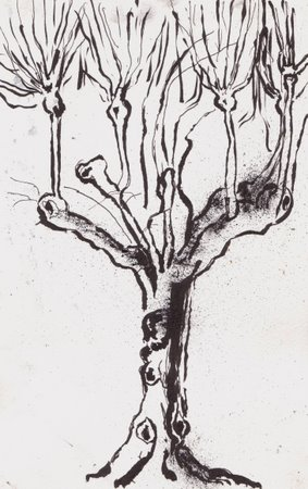 inktree1-11-dec-07-1-28-46-pm.jpg