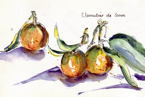 clementines in watercolour