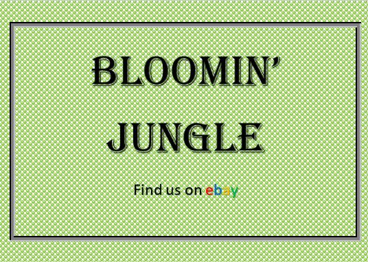 Bloomin' Jungle