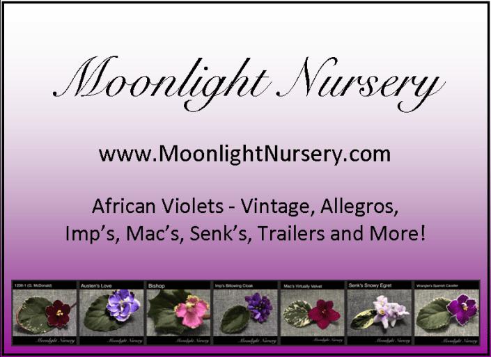 Moonlight Nursery