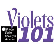 Brandmark for Violets 101