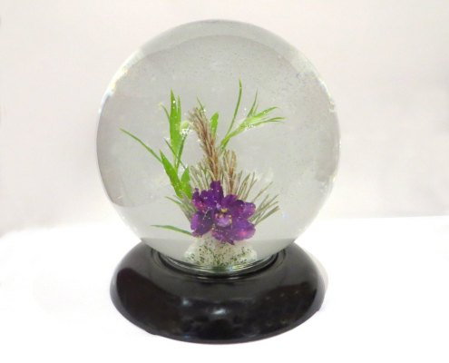 Underwater design in a globe with one purple violet blossom and foliage