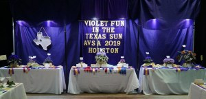 Three tables with winning exhibits from the 2019 AVSA Convention in Houston Texas