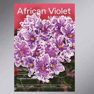 African Violet Magazine Cover September 2020